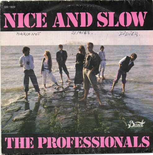 VINYL45T the professionals nice and slow